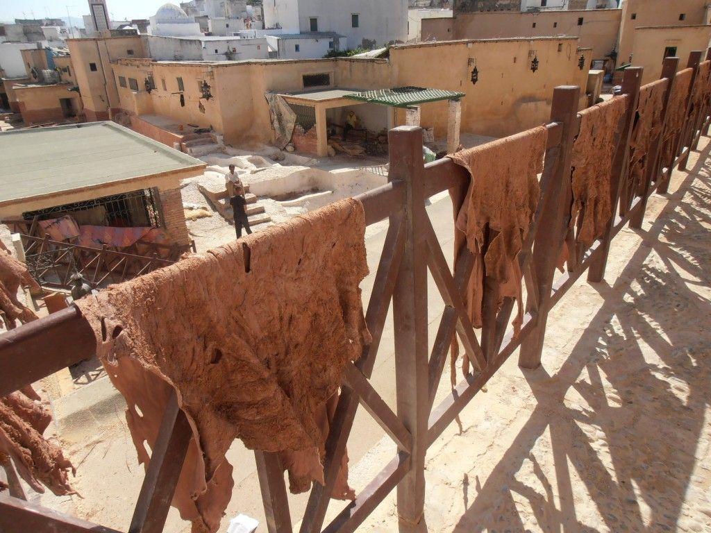 Pieles secando en la teneria de Tetuán - Los viajes de Margalliver